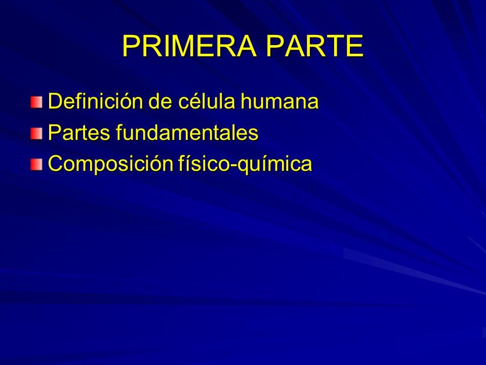 La célula es la unidad básica estructural y funcional del cuerpo humano.