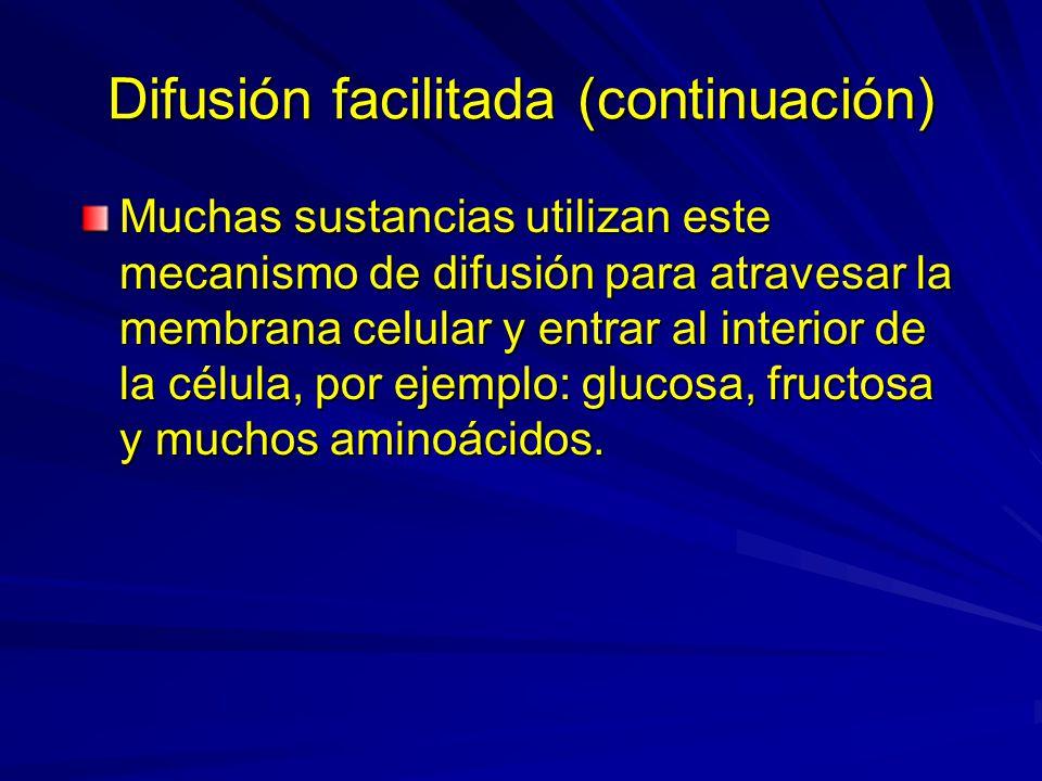 Difusión facilitada (continuación) Muchas sustancias utilizan este mecanismo de difusión para atravesar la membrana celular y entrar al interior de la