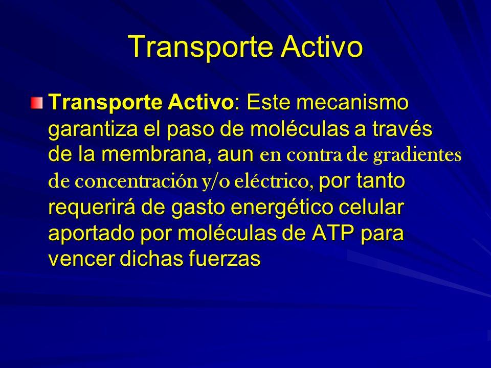 Transporte Activo Transporte Activo: Este mecanismo garantiza el paso de moléculas a través de la membrana, aun, por tanto requerirá de gasto energéti