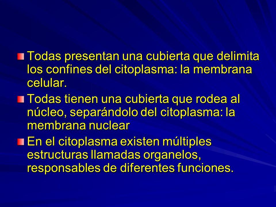 Todas presentan una cubierta que delimita los confines del citoplasma: la membrana celular. Todas tienen una cubierta que rodea al núcleo, separándolo