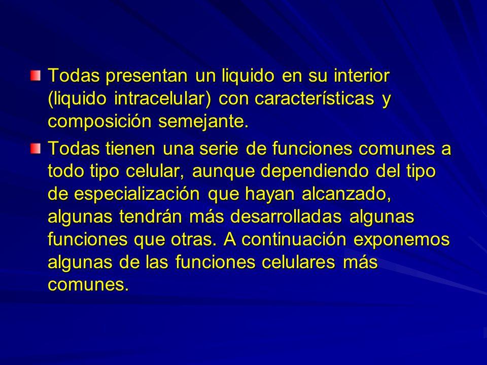 Todas presentan un liquido en su interior (liquido intracelular) con características y composición semejante. Todas tienen una serie de funciones comu