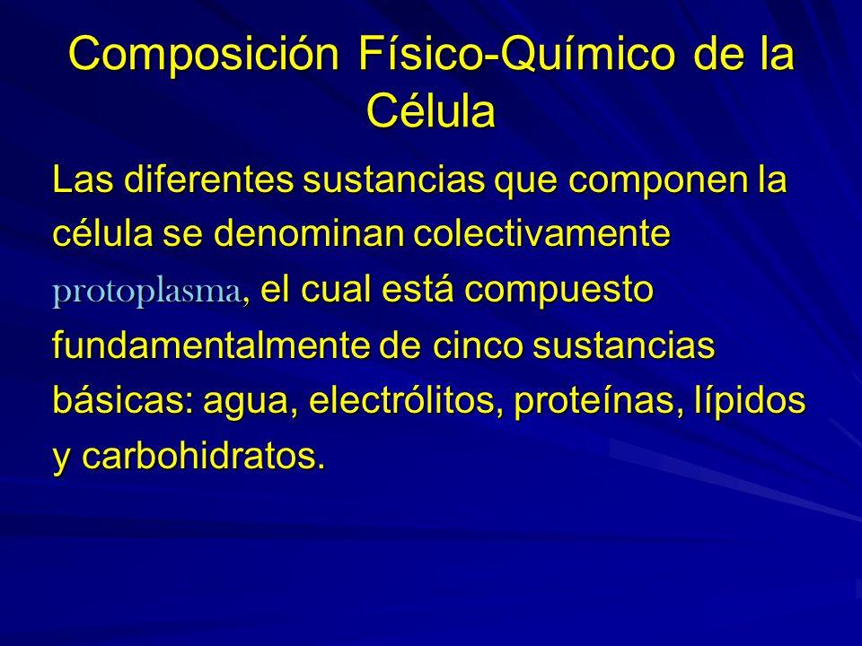 Composición Físico-Químico de la Célula Las diferentes sustancias que componen la célula se denominan colectivamente protoplasma, el cual está compues