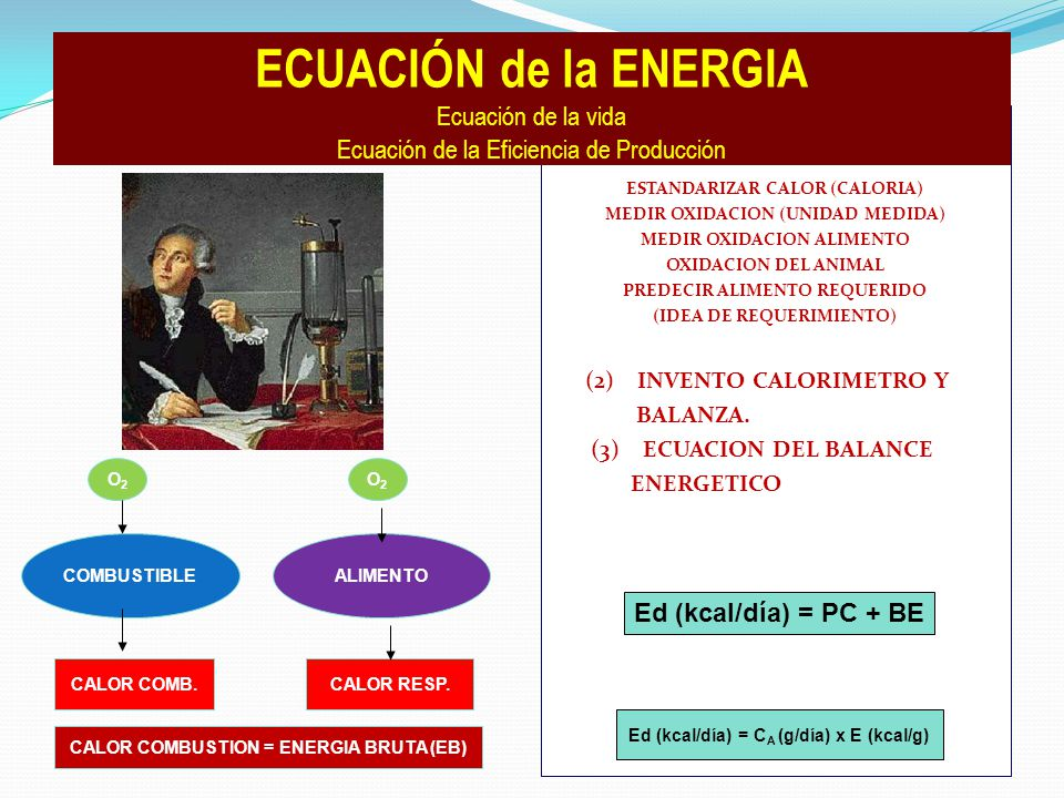 (1) SEMEJANZA : FUEGO-VIDA: ESTANDARIZAR CALOR (CALORIA) MEDIR OXIDACION (UNIDAD MEDIDA) MEDIR OXIDACION ALIMENTO OXIDACION DEL ANIMAL PREDECIR ALIMENTO REQUERIDO (IDEA DE REQUERIMIENTO) (2) INVENTO CALORIMETRO Y BALANZA.