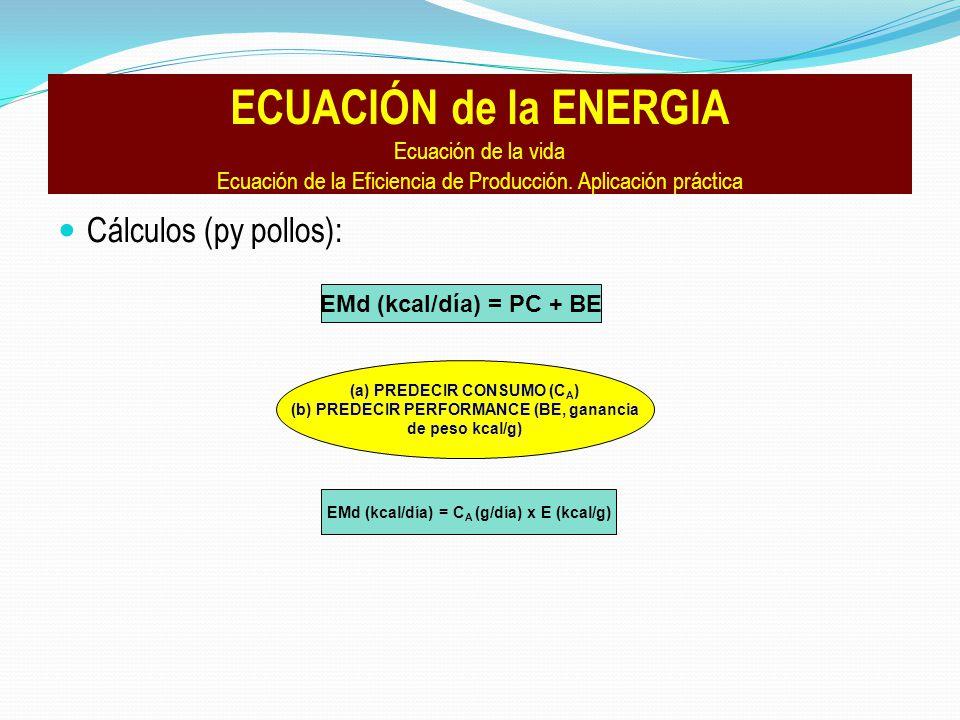 Cálculos (py pollos): ECUACIÓN de la ENERGIA Ecuación de la vida Ecuación de la Eficiencia de Producción.