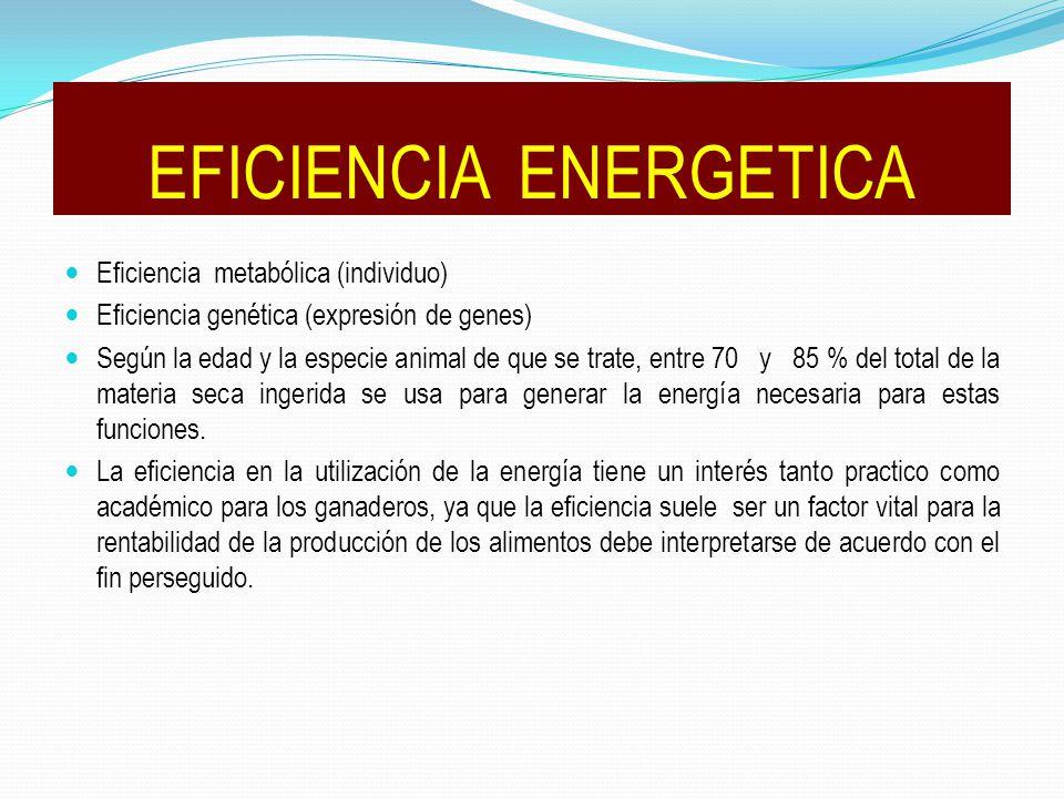 Eficiencia metabólica (individuo) Eficiencia genética (expresión de genes) Según la edad y la especie animal de que se trate, entre 70 y 85 % del total de la materia seca ingerida se usa para generar la energía necesaria para estas funciones.
