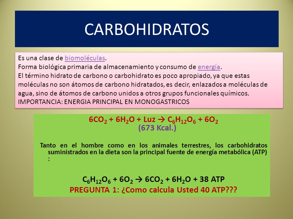 METABOLISMO DEL PIRUVATO Three fates of pyruvate: Conversion to lactate (anaerobic) Conversion to alanine (amino acid) Entry into the TCA cycle via pyruvate dehydrogenase pathway