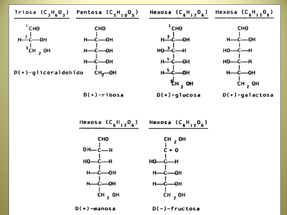 OXIDACION Y RUTAS DE LA GLUCOSA CELULAR Estudios con 14C y la formación de 14 CO2 en el tejido corporal han demostrado que el 35 – 65 % de la glucosa es oxidada hasta CO2.