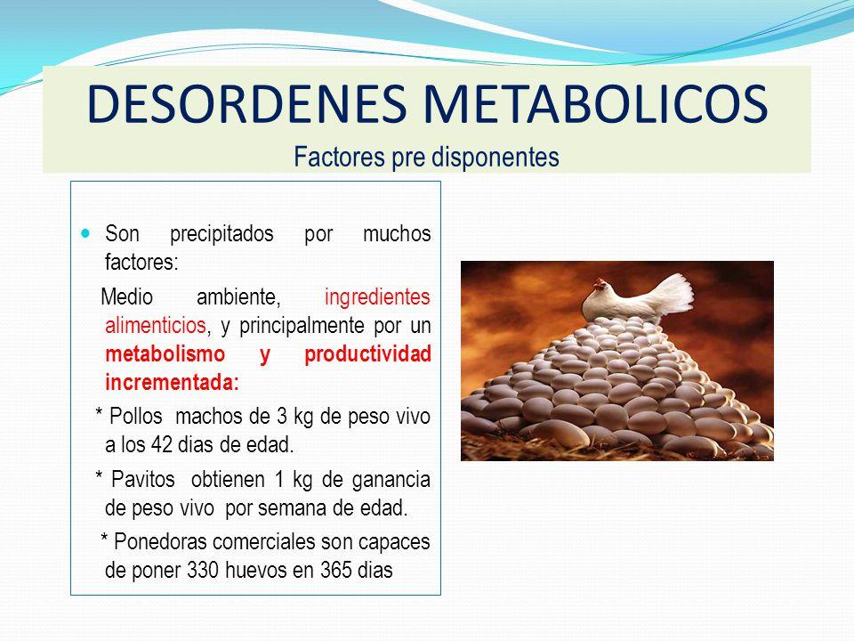 Mycotoxinas.Cobre. Aminas biogenicas. Harina pescado (Gizzerosine) Torta de Soya de mala calidad.