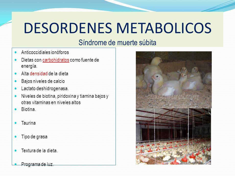 Anticoccidiales ionóforos Dietas con carbohidratos como fuente de energía.