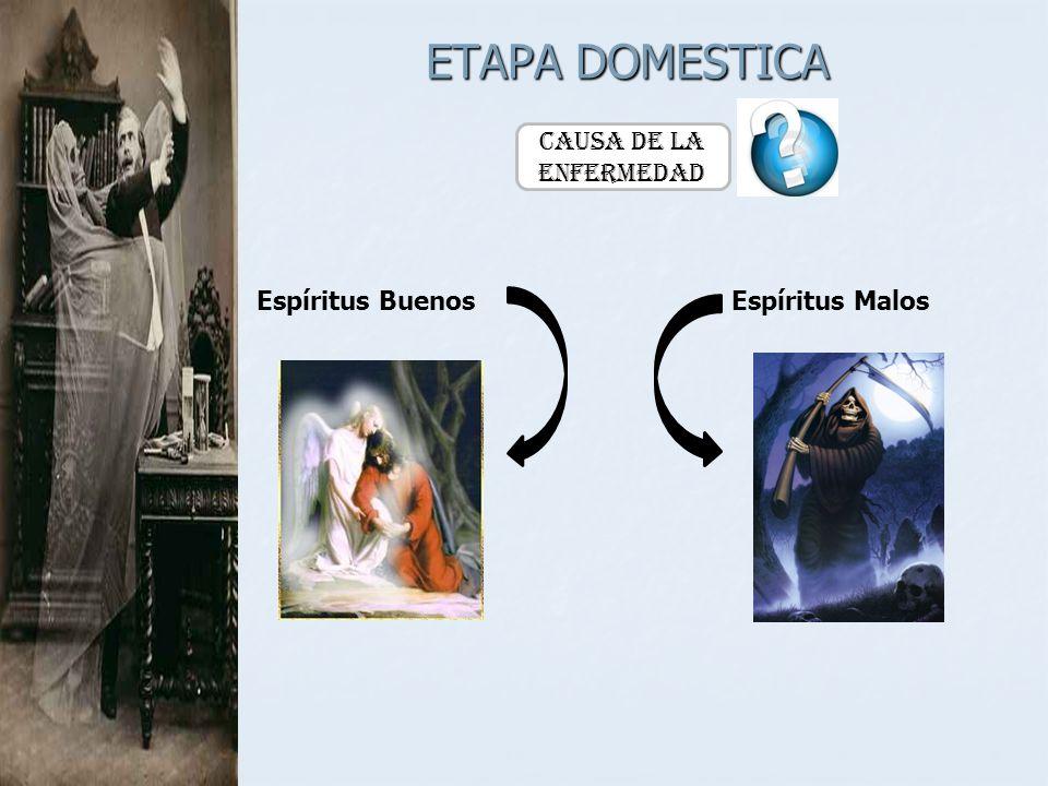 ETAPA DOMESTICA Causa de la Enfermedad Espíritus BuenosEspíritus Malos
