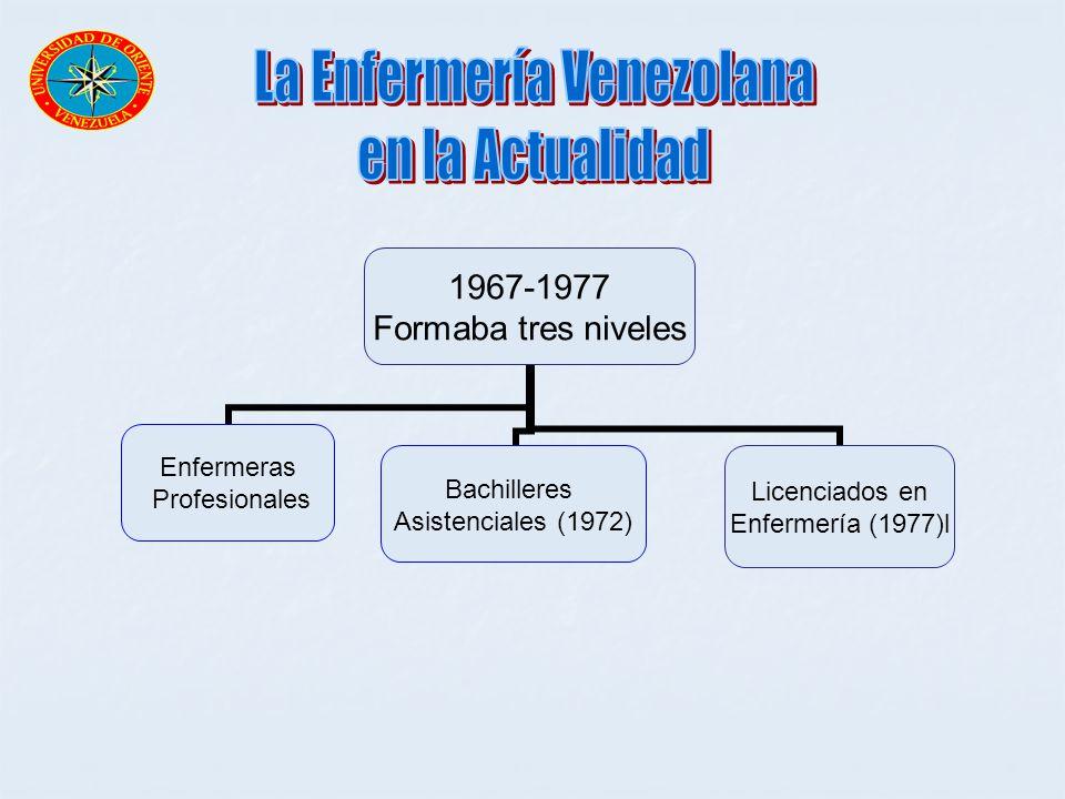 1967-1977 Formaba tres niveles Enfermeras Profesionales Bachilleres Asistenciales (1972) Licenciados en Enfermería (1977)l
