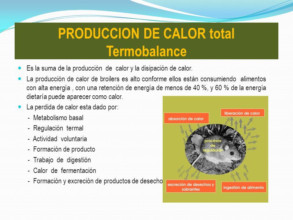 Es la suma de la producción de calor y la disipación de calor. La producción de calor de broilers es alto conforme ellos están consumiendo alimentos c