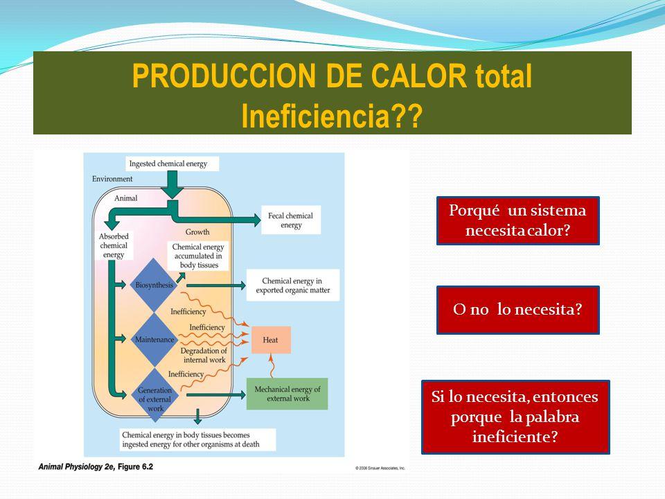Porqué un sistema necesita calor? O no lo necesita? Si lo necesita, entonces porque la palabra ineficiente? PRODUCCION DE CALOR total Ineficiencia??