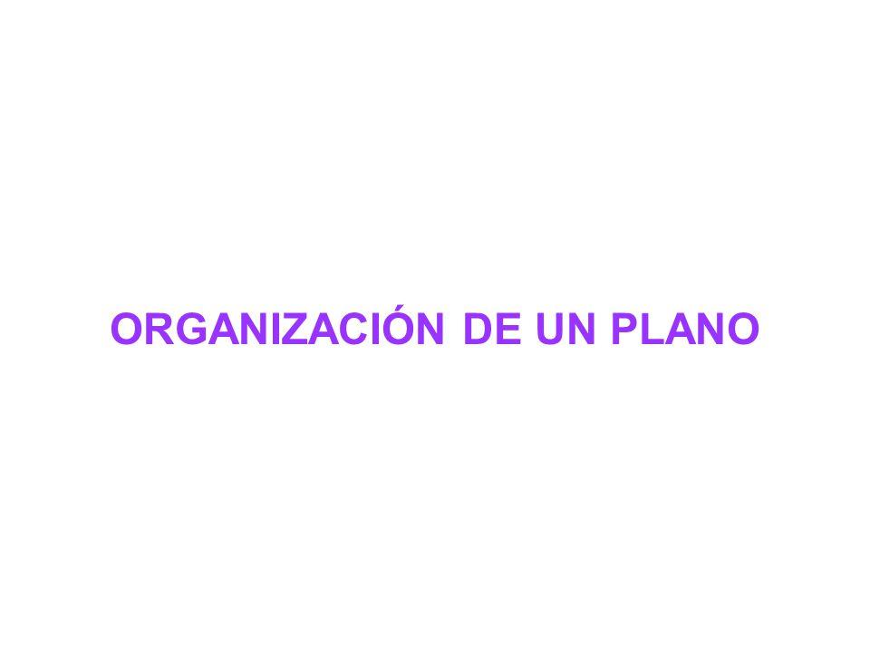 ORGANIZACIÓN DE UN PLANO
