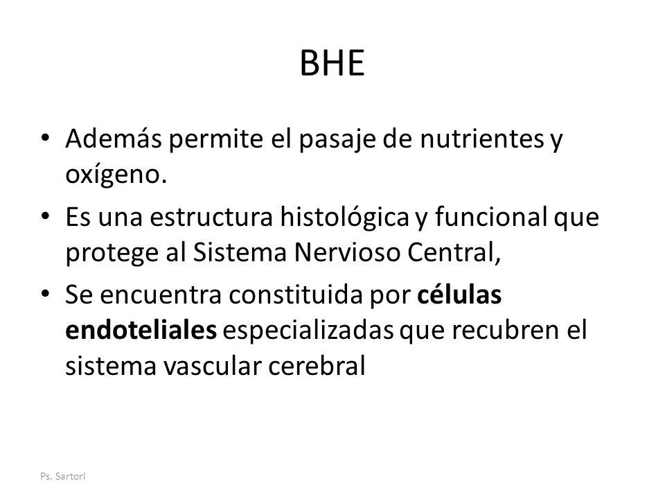 BHE Además permite el pasaje de nutrientes y oxígeno. Es una estructura histológica y funcional que protege al Sistema Nervioso Central, Se encuentra