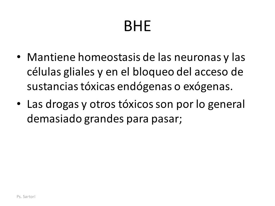 BHE Mantiene homeostasis de las neuronas y las células gliales y en el bloqueo del acceso de sustancias tóxicas endógenas o exógenas. Las drogas y otr
