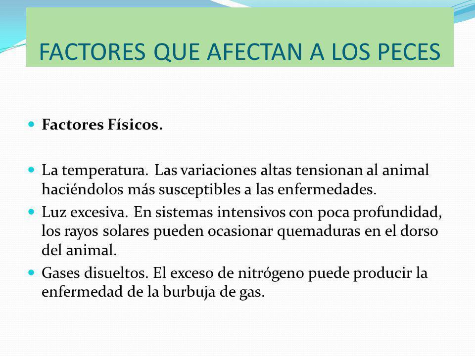 FACTORES QUE AFECTAN A LOS PECES Factores Físicos.