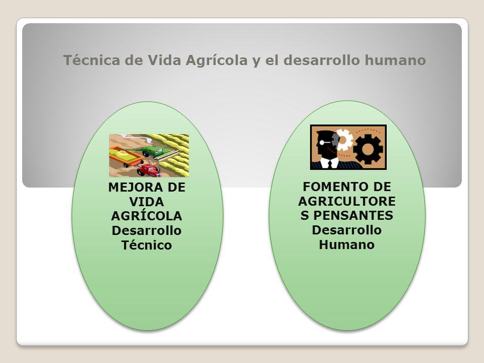 Técnica de Vida Agrícola y el desarrollo humano MEJORA DE VIDA AGRÍCOLA Desarrollo Técnico MEJORA DE VIDA AGRÍCOLA Desarrollo Técnico FOMENTO DE AGRICULTORE S PENSANTES Desarrollo Humano FOMENTO DE AGRICULTORE S PENSANTES Desarrollo Humano