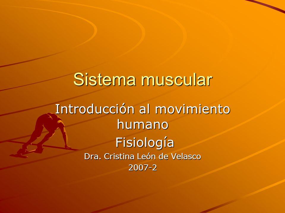 Sistema muscular Introducción al movimiento humano Fisiología Fisiología Dra. Cristina León de Velasco 2007-2
