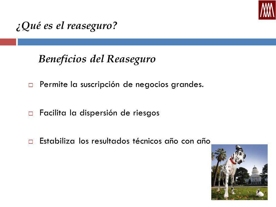 ¿Qué es el reaseguro.Beneficios del Reaseguro Permite la suscripción de negocios grandes.