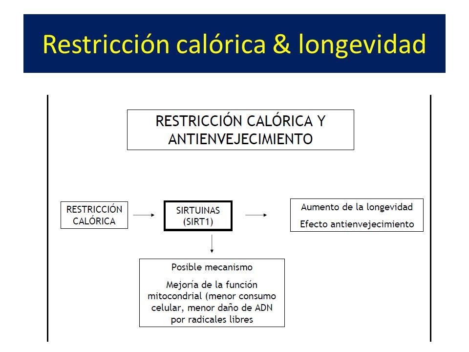 Restricción calórica & longevidad