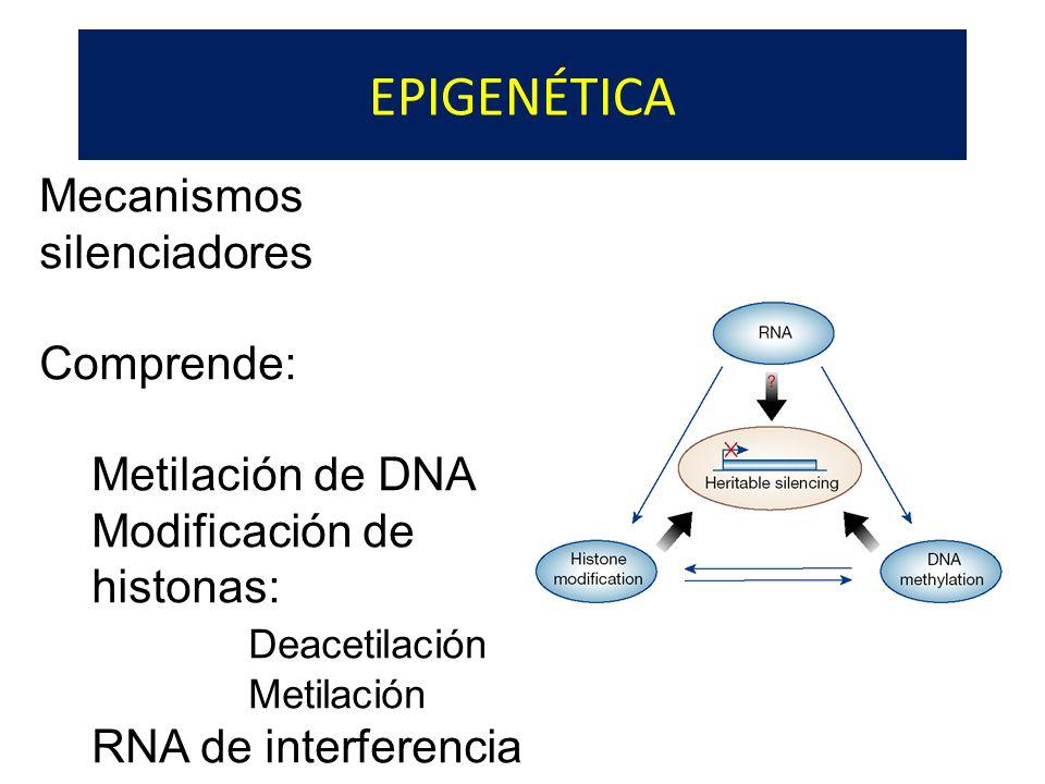 EPIGENÉTICA Mecanismos silenciadores Comprende: Metilación de DNA Modificación de histonas: Deacetilación Metilación RNA de interferencia