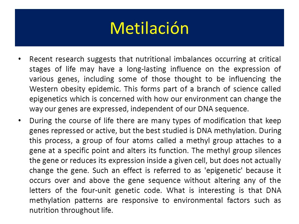 Many micronutrients and vitamins are critical for DNA synthesis/repair and maintenance of DNA methylation patterns.