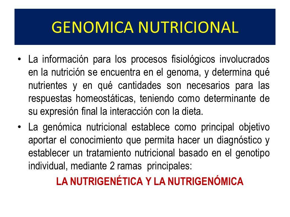 La información para los procesos fisiológicos involucrados en la nutrición se encuentra en el genoma, y determina qué nutrientes y en qué cantidades s