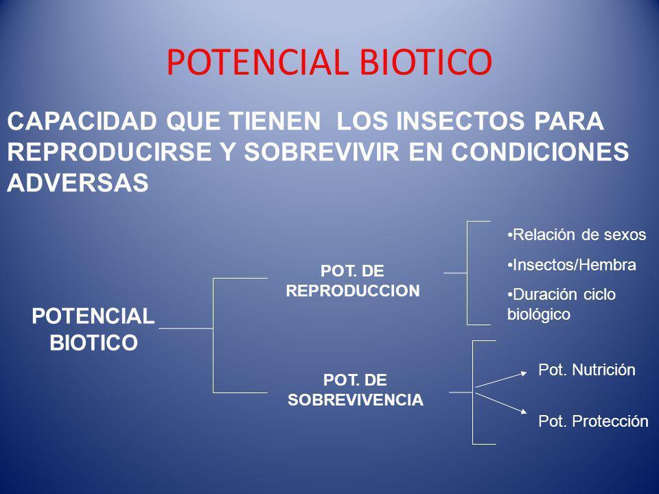 POTENCIAL BIOTICO CAPACIDAD QUE TIENEN LOS INSECTOS PARA REPRODUCIRSE Y SOBREVIVIR EN CONDICIONES ADVERSAS POTENCIAL BIOTICO POT.