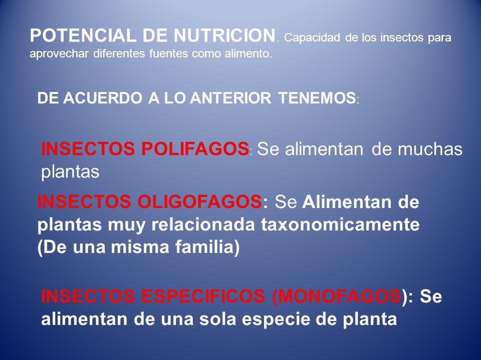 POTENCIAL DE NUTRICION.Capacidad de los insectos para aprovechar diferentes fuentes como alimento.