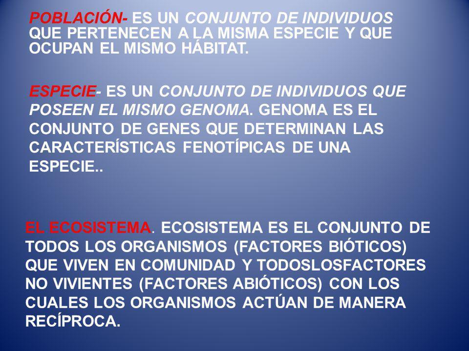 EL ECOSISTEMA.