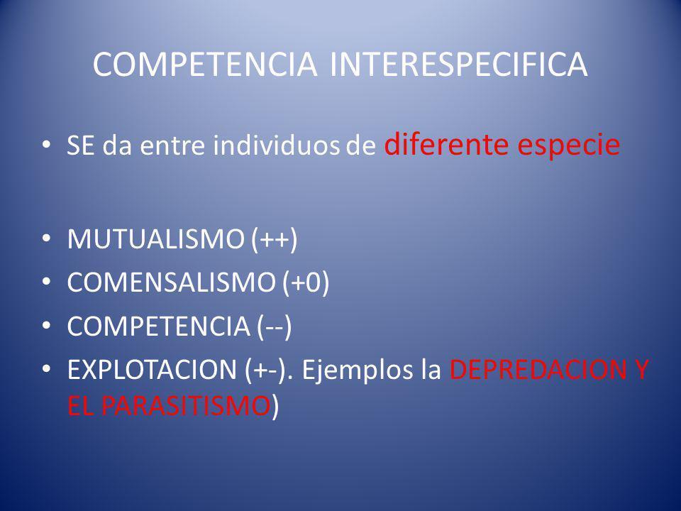 COMPETENCIA INTERESPECIFICA SE da entre individuos de diferente especie MUTUALISMO (++) COMENSALISMO (+0) COMPETENCIA (--) EXPLOTACION (+-).