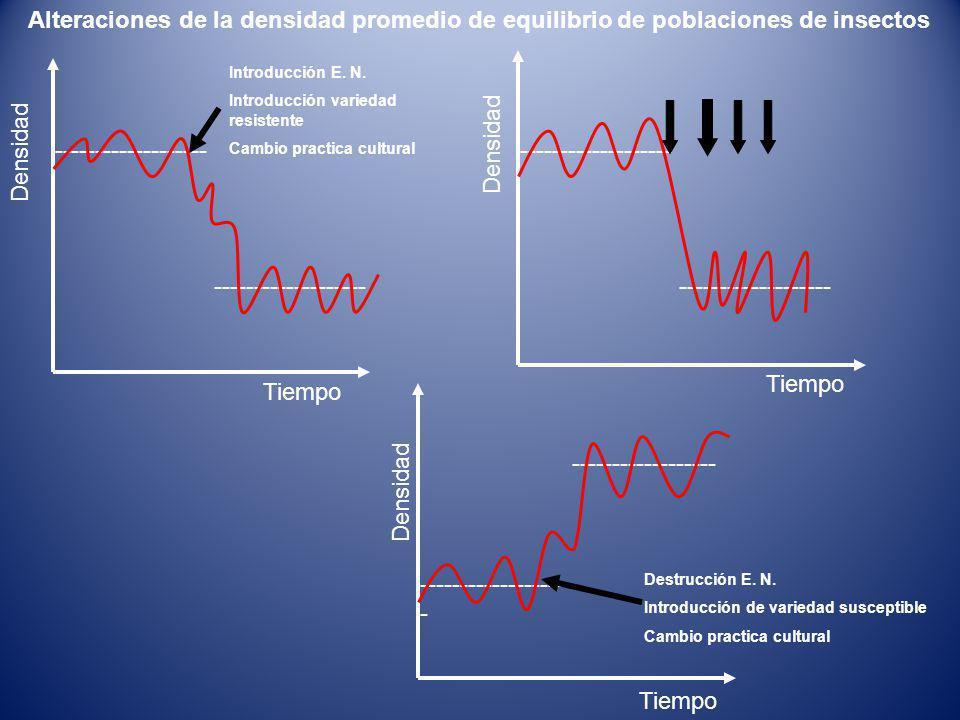 ------------------- Tiempo Densidad ------------------ - ------------------ Tiempo Densidad Destrucción E.