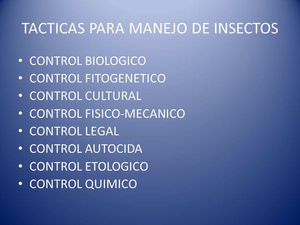 TACTICAS PARA MANEJO DE INSECTOS CONTROL BIOLOGICO CONTROL FITOGENETICO CONTROL CULTURAL CONTROL FISICO-MECANICO CONTROL LEGAL CONTROL AUTOCIDA CONTROL ETOLOGICO CONTROL QUIMICO