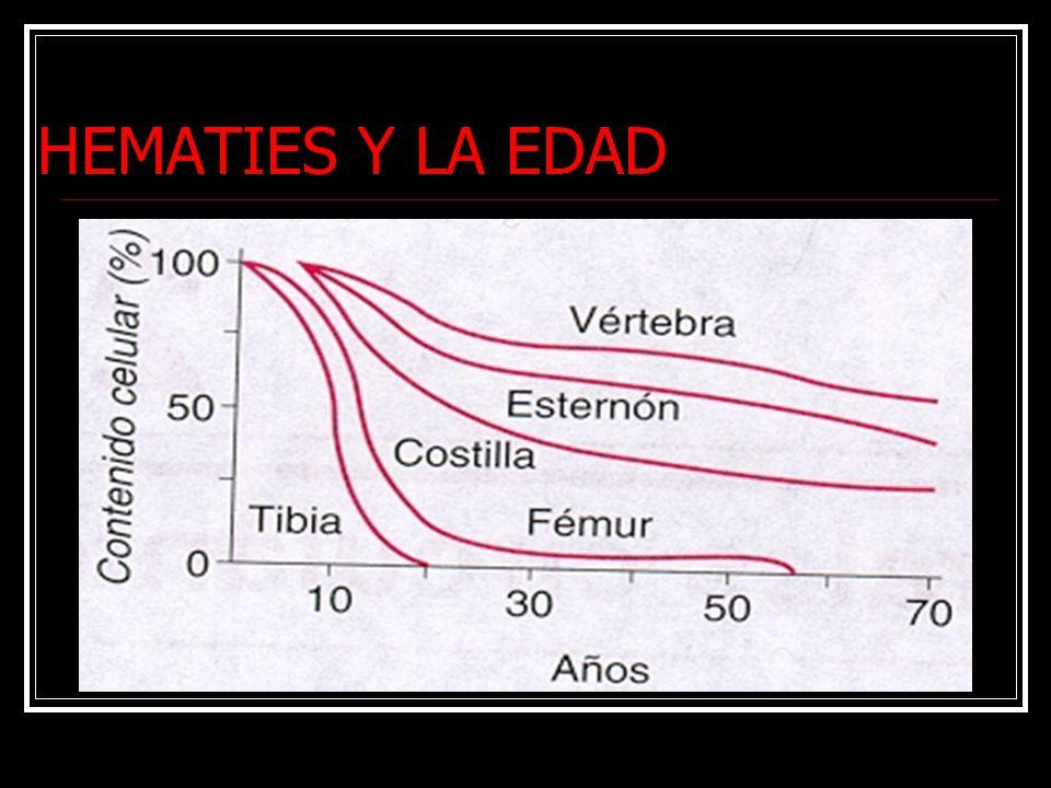 HEMATIES Y LA EDAD