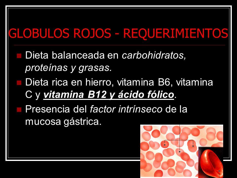 GLOBULOS ROJOS - REQUERIMIENTOS Dieta balanceada en carbohidratos, proteínas y grasas. Dieta rica en hierro, vitamina B6, vitamina C y vitamina B12 y