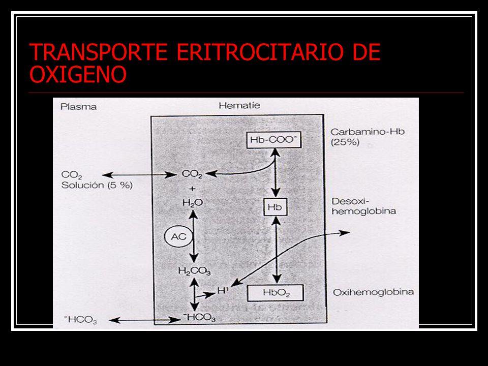 TRANSPORTE ERITROCITARIO DE OXIGENO