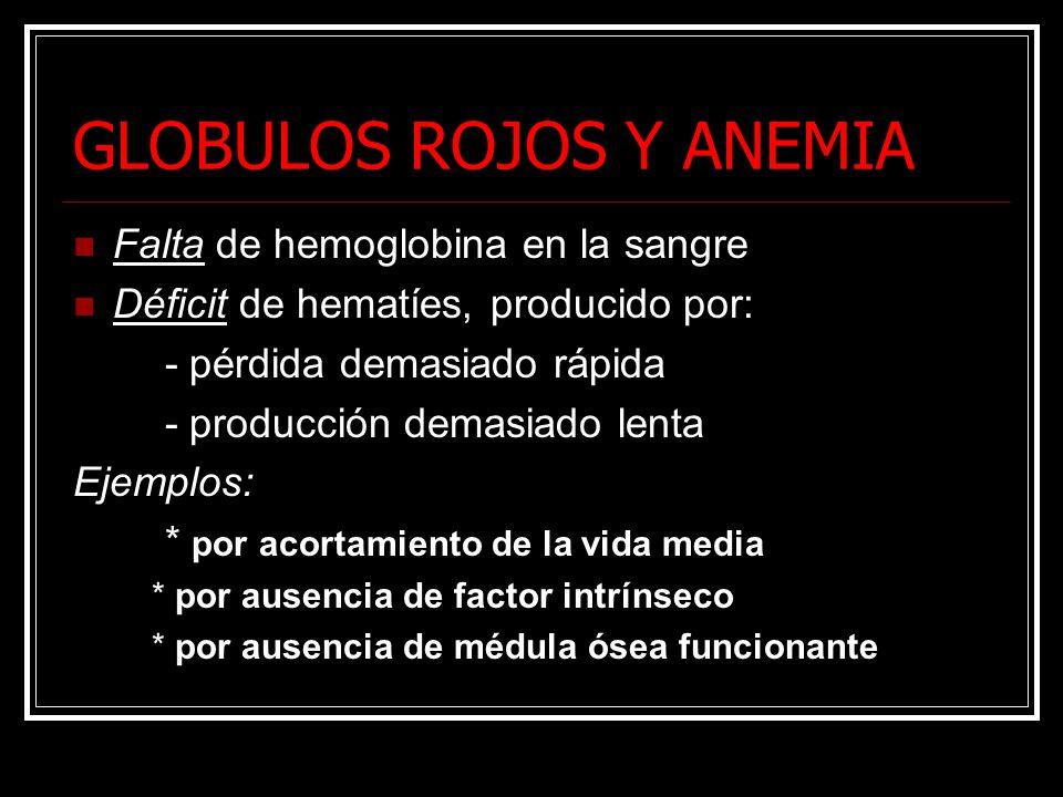 GLOBULOS ROJOS Y ANEMIA Falta de hemoglobina en la sangre Déficit de hematíes, producido por: - pérdida demasiado rápida - producción demasiado lenta