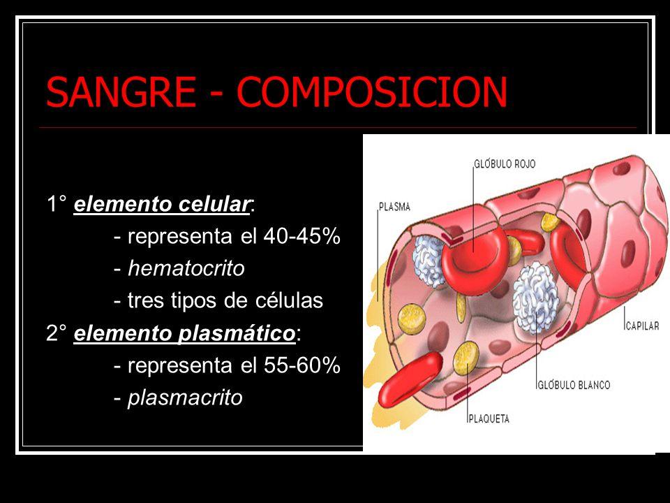 SANGRE - COMPOSICION 1° elemento celular: - representa el 40-45% - hematocrito - tres tipos de células 2° elemento plasmático: - representa el 55-60% - plasmacrito