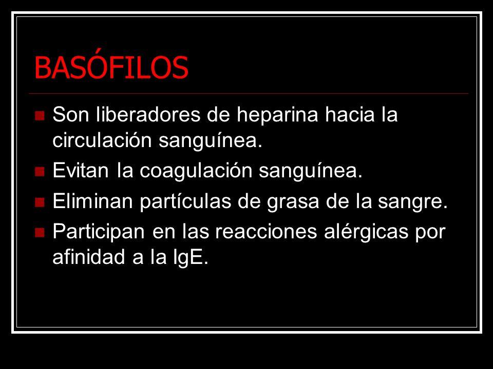 BASÓFILOS Son liberadores de heparina hacia la circulación sanguínea. Evitan la coagulación sanguínea. Eliminan partículas de grasa de la sangre. Part