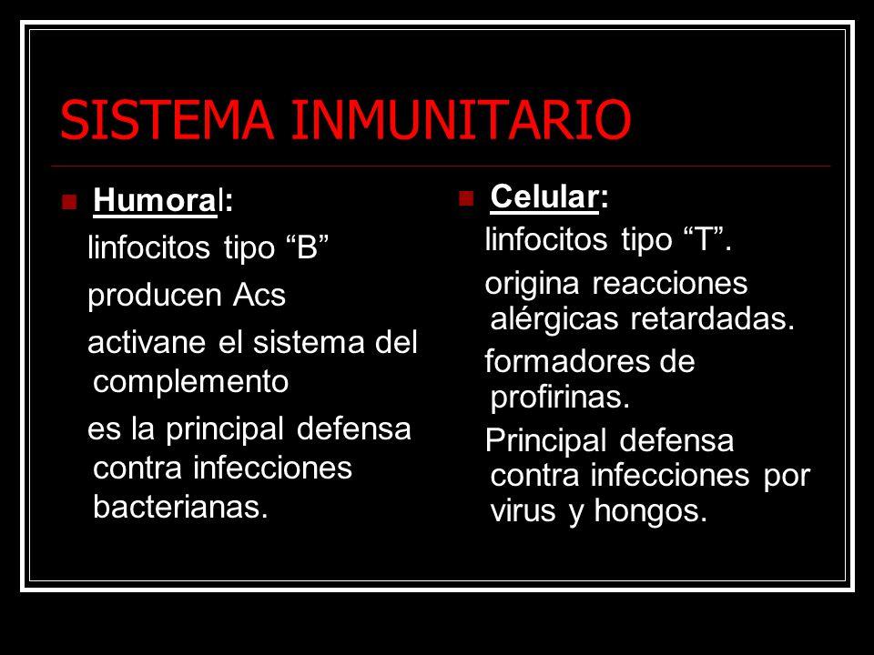 SISTEMA INMUNITARIO Humoral: linfocitos tipo B producen Acs activane el sistema del complemento es la principal defensa contra infecciones bacterianas.