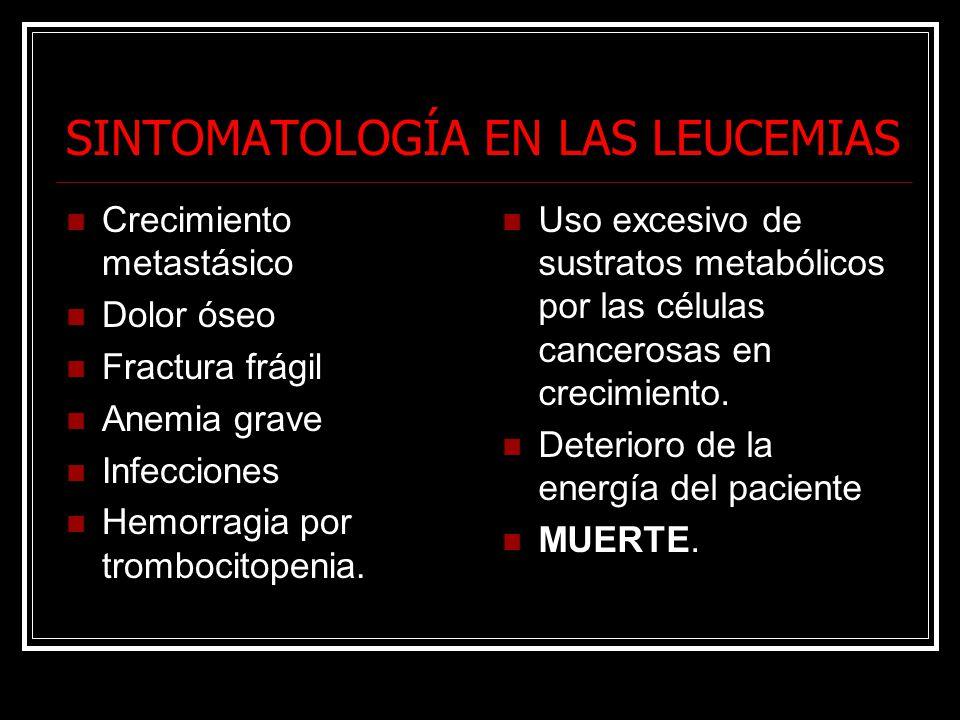 SINTOMATOLOGÍA EN LAS LEUCEMIAS Crecimiento metastásico Dolor óseo Fractura frágil Anemia grave Infecciones Hemorragia por trombocitopenia. Uso excesi