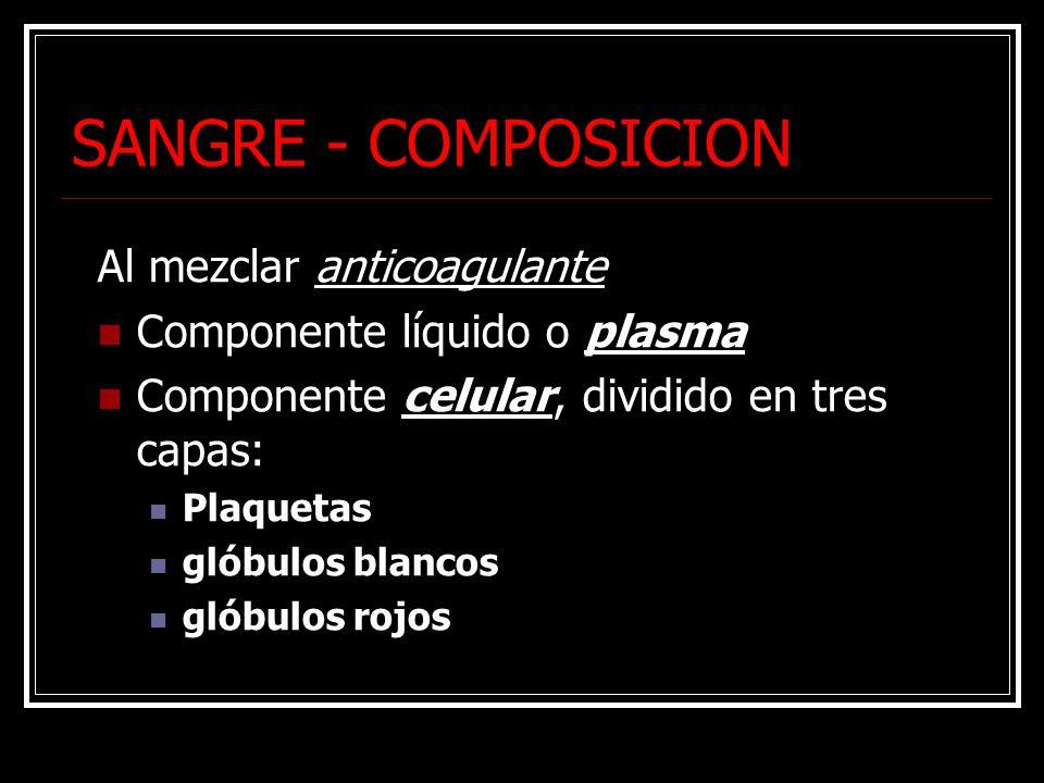SANGRE - COMPOSICION Al mezclar anticoagulante Componente líquido o plasma Componente celular, dividido en tres capas: Plaquetas glóbulos blancos glóbulos rojos