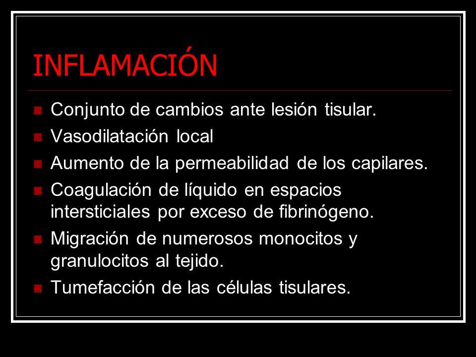 INFLAMACIÓN Conjunto de cambios ante lesión tisular. Vasodilatación local Aumento de la permeabilidad de los capilares. Coagulación de líquido en espa