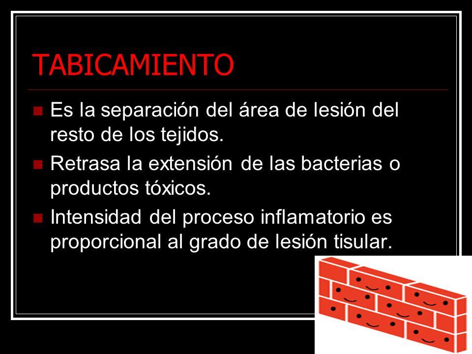 TABICAMIENTO Es la separación del área de lesión del resto de los tejidos. Retrasa la extensión de las bacterias o productos tóxicos. Intensidad del p