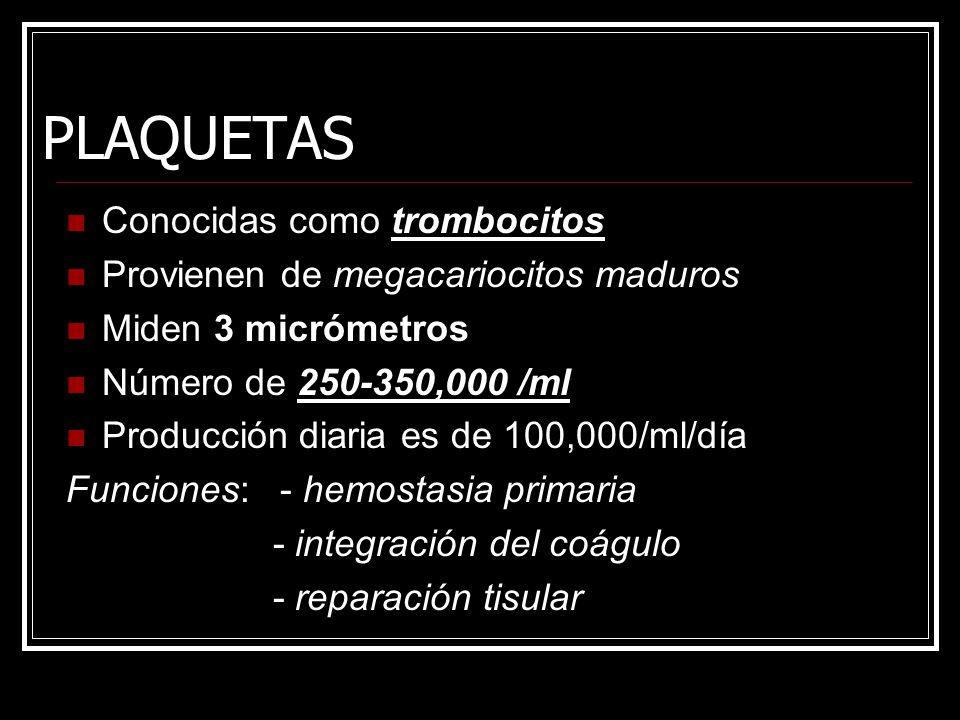 PLAQUETAS Conocidas como trombocitos Provienen de megacariocitos maduros Miden 3 micrómetros Número de 250-350,000 /ml Producción diaria es de 100,000/ml/día Funciones: - hemostasia primaria - integración del coágulo - reparación tisular