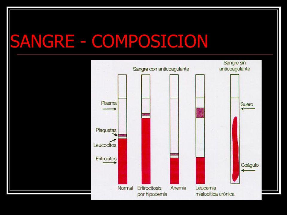 SANGRE - COMPOSICION