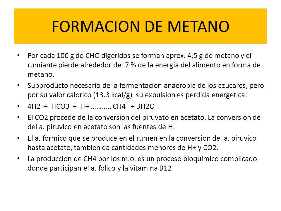 FORMACION DE METANO Por cada 100 g de CHO digeridos se forman aprox. 4,5 g de metano y el rumiante pierde alrededor del 7 % de la energia del alimento