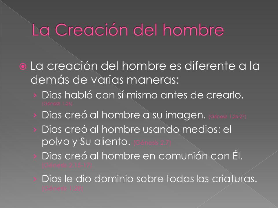 La creación del hombre es diferente a la demás de varias maneras: Dios habló con sí mismo antes de crearlo. (Génesis 1.26) Dios creó al hombre a su im