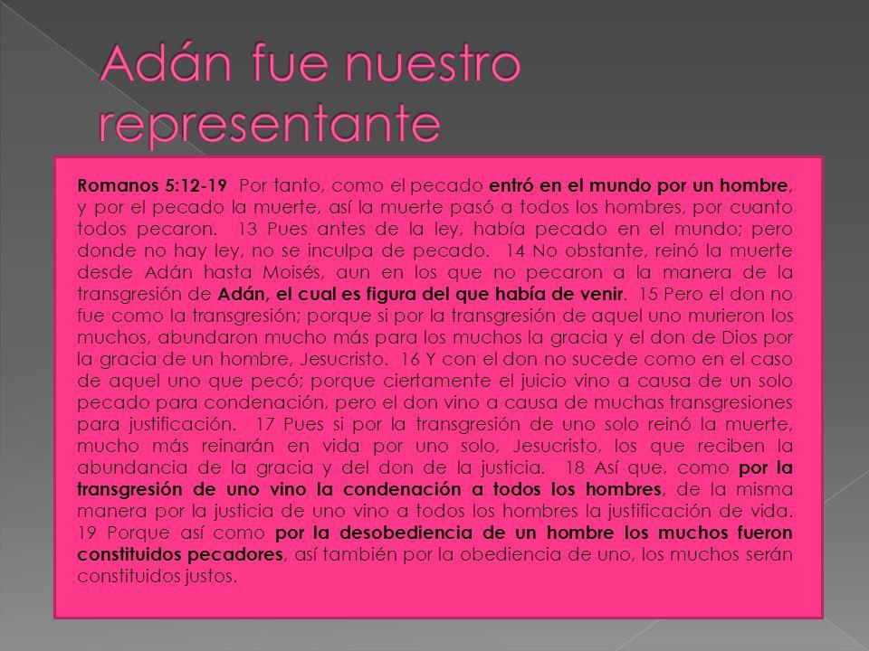 La relación de Dios con Adán fue pactual. La vida de Adán en el Edén fue una prueba para la humanidad. Lo que hizo Adán es lo mismo que cualquiera de
